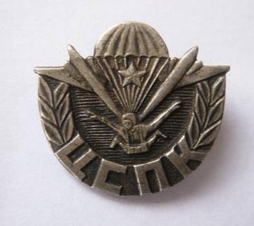 309-й ЦСФП ВДВ